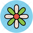 Puschkinia Icon