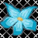 Puschkinia Flower Icon