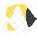 Pyramid Butterfly Fish Icon