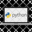 Python Bigdata Code Icon