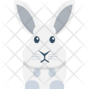 Rabbit Face Zoo Icon