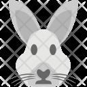 Rabbit Face Animal Icon
