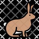 Rabbit Bunny Zoo Icon