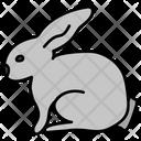Rabbit Pet Animal Bunny Icon