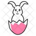 Rabbit Decorative Rabbit Mammal Icon