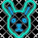 Bunny Animal Conejo Icon