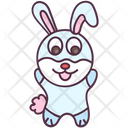 Animal Rabbit Bunny Icon
