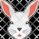 Pet Rabbit Animal Icon
