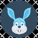 Rabbit Hare Bunny Icon