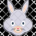 Animal Bunny Rabbit Icon