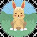 Rabbit Animal Pet Icon