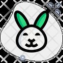 Rabbit Smiling Icon