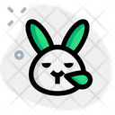 Rabbit Snoring Icon