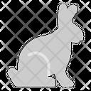 Rabit Pet Rodent Shop Icon