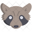 Raccon Icon