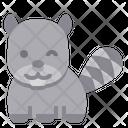 Raccoon Zoo Mammal Icon