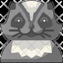 Racoon Wildlife Wild Icon