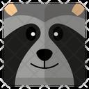 Racoon Head Icon