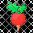Raddish Icon