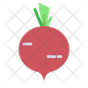 White Radish Vegetable Organic Icon