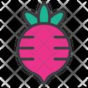 Radish Beet Radish Beet Icon