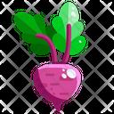 Radish Root Vegetable Icon