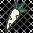 Radish Vegetable Fruit Icon
