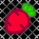 Radish Food Vegetable Icon