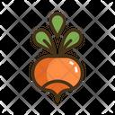 Radish Vegatable Vegatables Icon