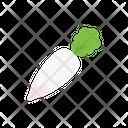 Radish Vegetable Salad Icon