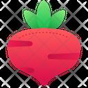 Radish Food Organic Icon