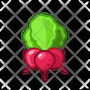 Radish Vegetables Vegetarian Icon