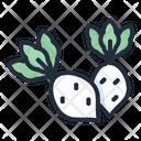 Radish Vegetable Healthy Icon