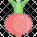 Radish Vegetable Healthy Food Icon