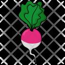 Radish Salad Vegetable Icon