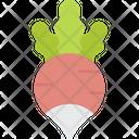 Radish Vegetable Vegetarian Icon