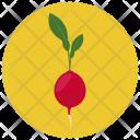 Radish Beet Vegetable Icon