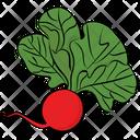 Radish Vegetable Natural Diet Icon