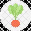 Radish Salad Cooking Icon