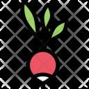 Radish Vegetables Fruit Icon