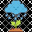Ecology Rain Tree Icon