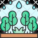 Rainy Season Icon