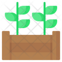 Raised Bed Plant Sprout Icon