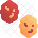 Raisin Fruit Dry Icon
