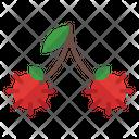 Rambutan Organic Vegetarian Icon