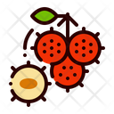 Fruit Food Rambutan Icon