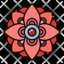 Rangoli Decoration Flower Icon