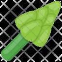 Rapini Icon