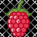 Raspberry Fruit Fit Icon