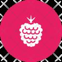 Raspberry Berry Fruit Icon